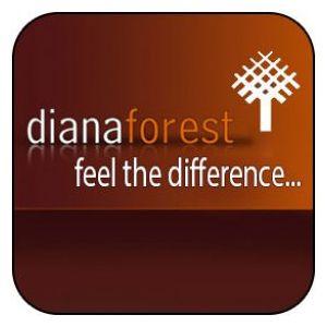 Діана Форест Харків, купити Diana forest в Венге з доставкою